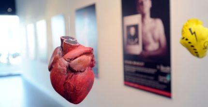 Heart in gallery
