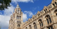 Visit to the National History Museum and the Linnean Society 1