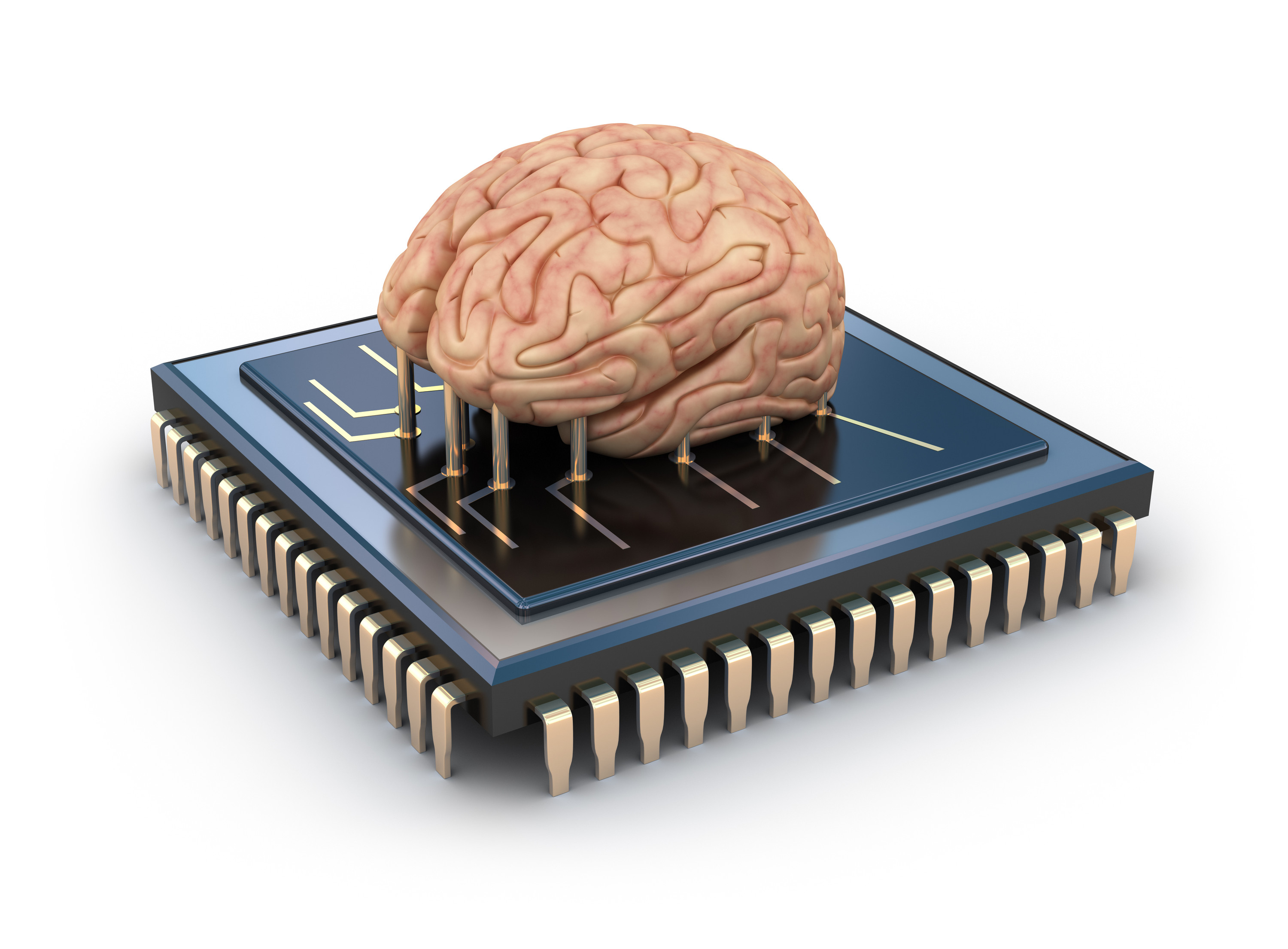 Artificial Life Chip and Human Brain copy