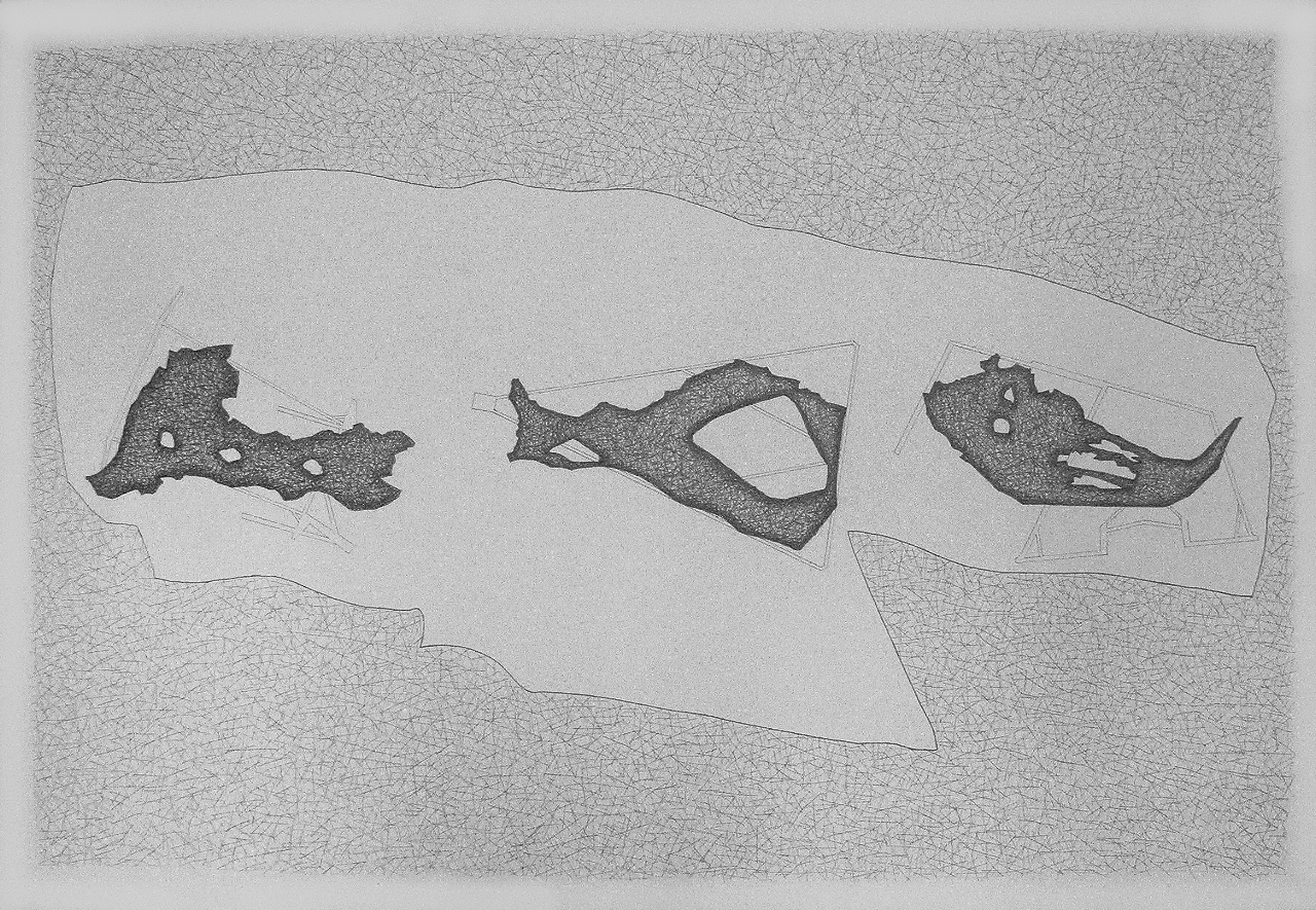 Drawing by Verity Mansfield, 3Remnants From Dodnash, 2011, Pencil on fabriano paper, 800mm x 1100mm
