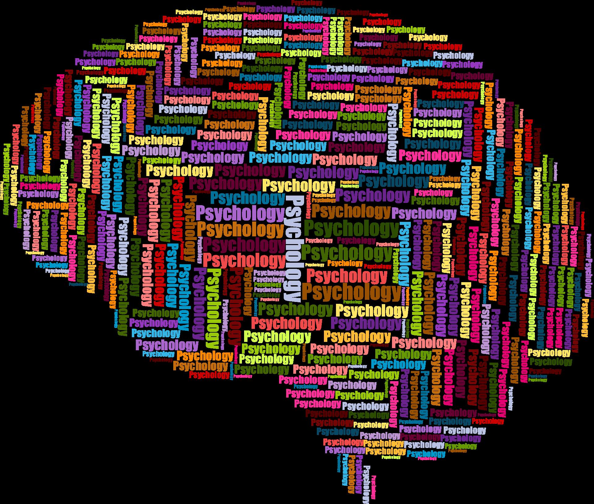 brain-3350799 1