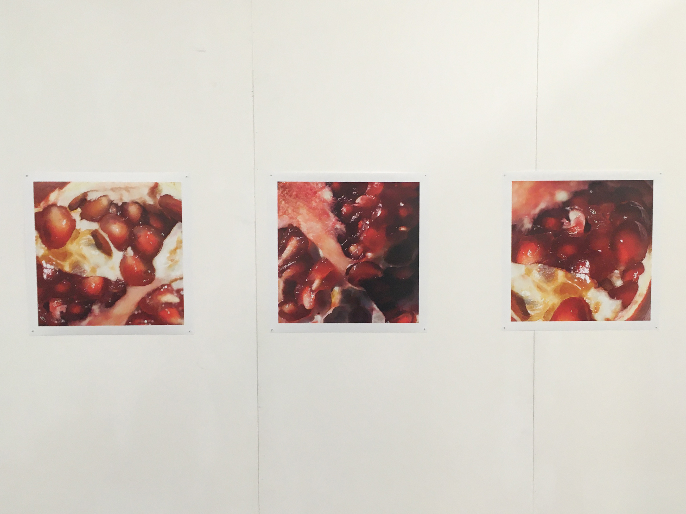 Pomegranates at Exhibition