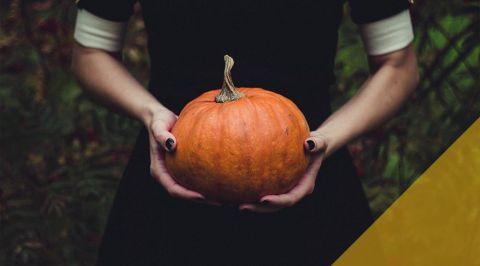 blogmainimagetemplate pumpkin