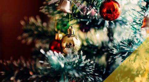 blogmainimagetemplate- christmas tree