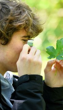 Wildlife student with a magnifying glass