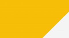BSc (Hons) Adult Nursing (Degree Apprenticeship Programme)
